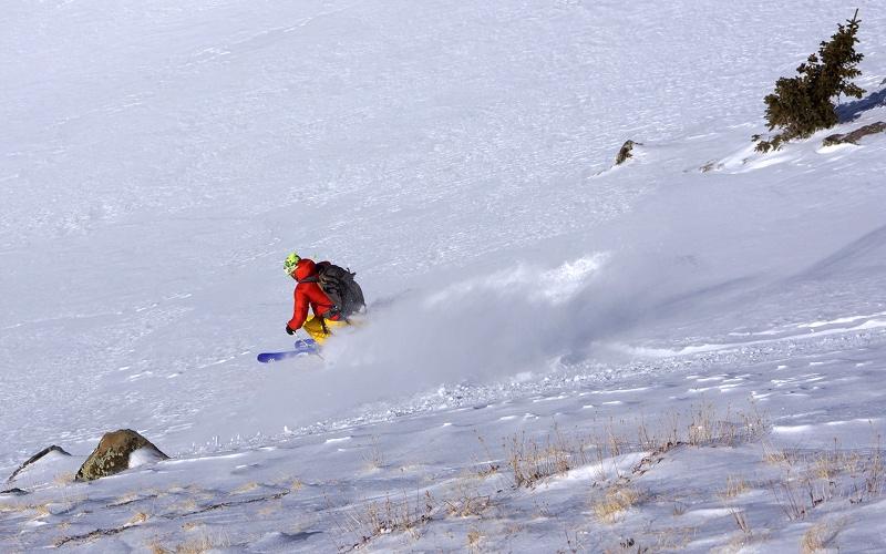 wheeler, ski1